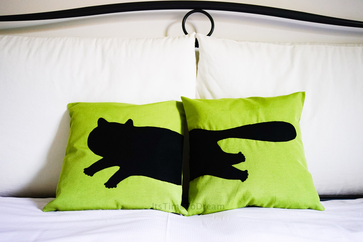 It's Time To Dream cat pillow set